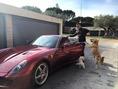 C・ロナウドと愛車フェラーリと愛犬たち(写真は本人のインスタグラムより)