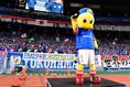 横浜Fマリノス/マリノスくん 写真:金子拓弥(サッカーダイジェスト写真部)